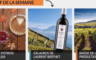 Galaurus du Lavaux – RELAIS DU VIN & CO